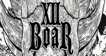 XII Boar banner